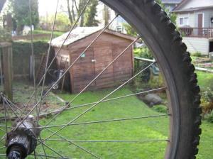 bike-wheel
