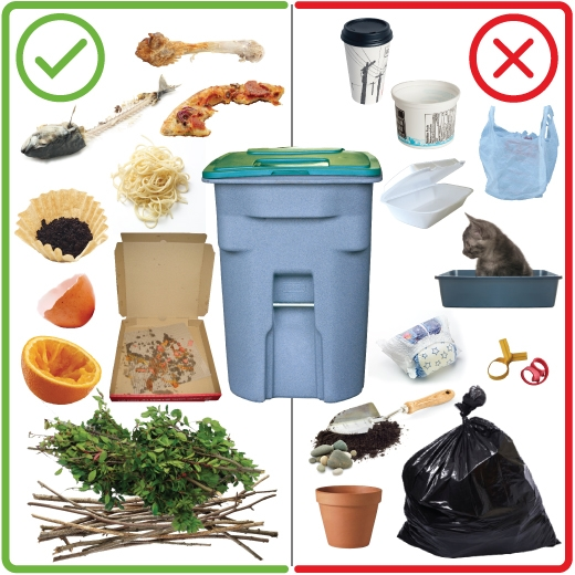Food waste the clean bin project blog for Waste things uses